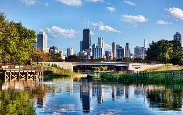 Фото обои деревья, мост, река, небоскреб, дома, Chicago, сша