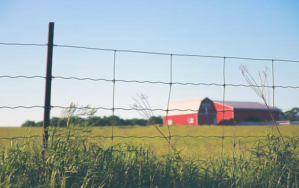 Фото обои сарай, солнечный, небо, трава, поле, забор, ферма