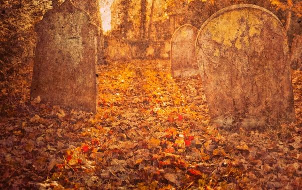 Фото обои осень, листья, деревья, листва, кладбище