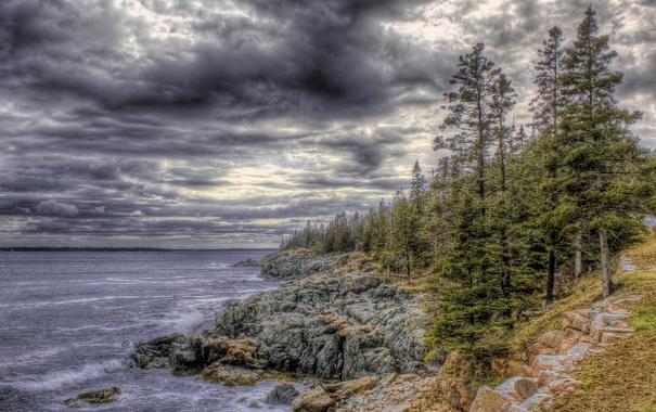 Фото обои лес, небо, деревья, тучи, озеро, камни, скалы
