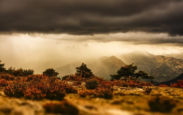 Фото обои серые облака буря, солнце, трава, горы