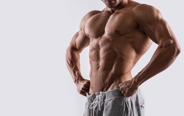 Фото обои sexy, muscles, pose, Herculean