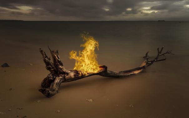 Фото обои море, дерево, огонь, берег