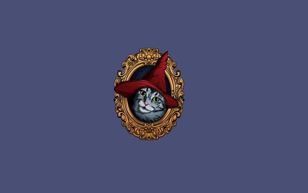 Фото обои кошка, портрет, колпак красный, картина, минимализм, cat, шапка