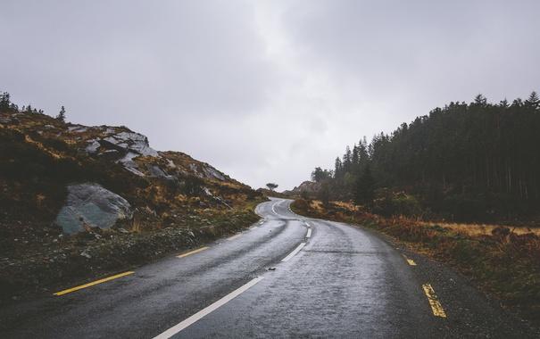 Фото обои дорога, волны, облака, деревья