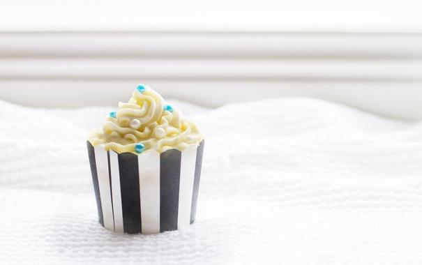 Фото обои love, food, art, cupcake
