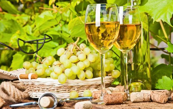 Фото обои листья, природа, вино, бокал, бутылка, пробка, штопор