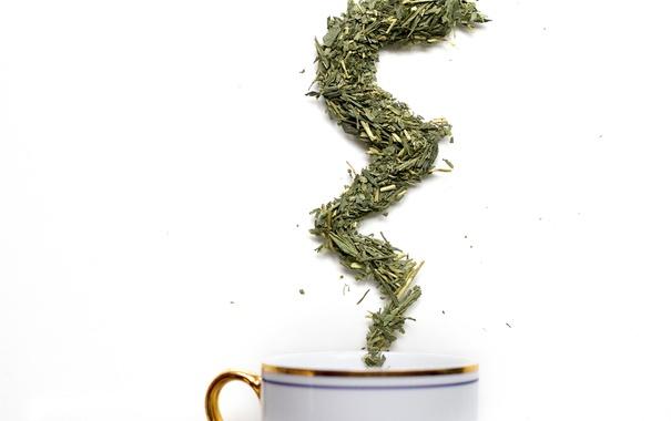 Фото обои tea, herbs, cup