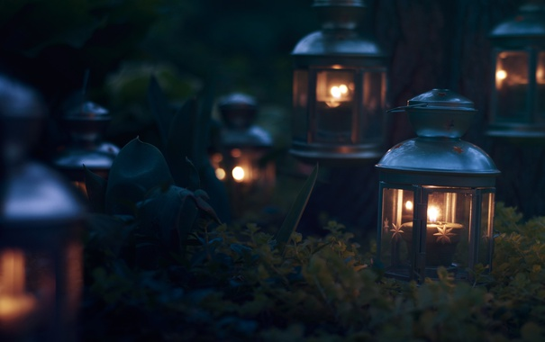 Фото обои candles, plants, lamps, darkness, lantern