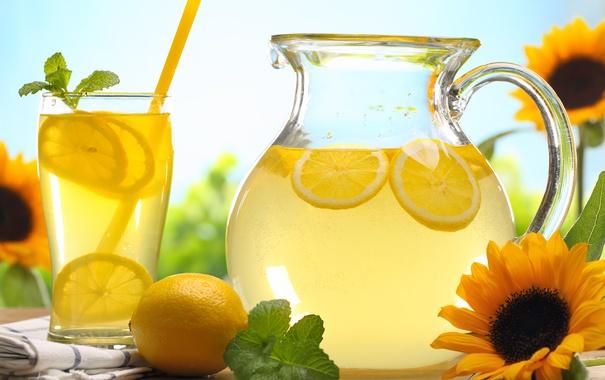 Фото обои лимон, подсолнух, лимонный напиток