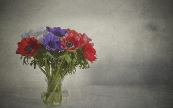 Фото обои букет, лепестки, ваза