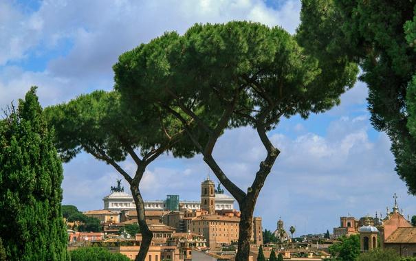 Фото обои небо, деревья, пейзаж, Рим, Италия, Витториано