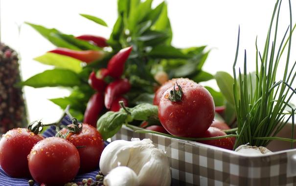 Фото обои зелень, еда, натюрморт, овощи, томаты, чеснок