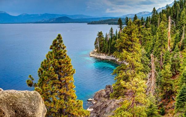 Фото обои лес, деревья, горы, озеро, камни, Калифорния, США