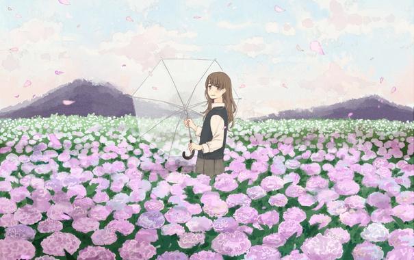 Фото обои поле, девушка, цветы, зонтик, зонт, лепестки, арт