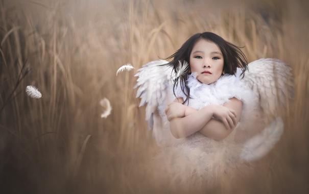 Фото обои фон, ангел, девочка