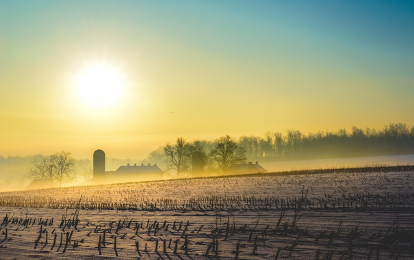 Фото обои пейзаж, снег, поле, утро