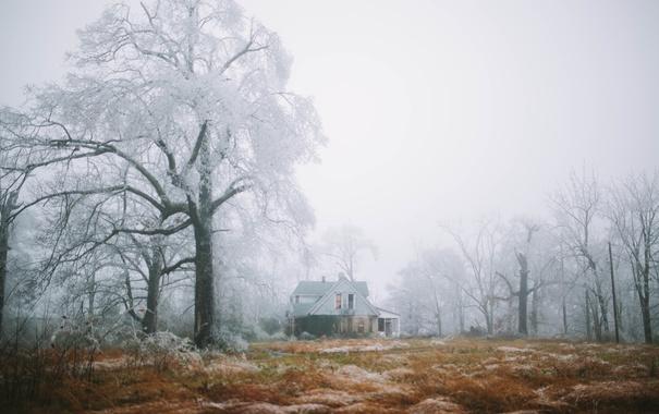 Фото обои туман, ферма, деревья, дом, зима