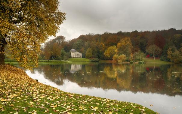 Фото обои лес, осень, Природа, nature