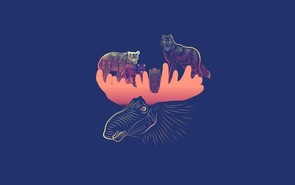 Фото обои минимализм, животные, медведь, elk, лось, сова, волк