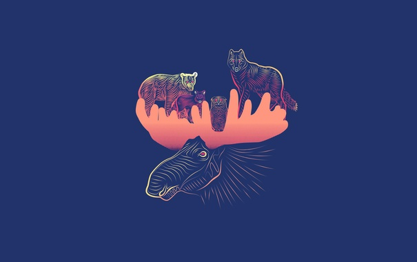 Фото обои животные, сова, волк, минимализм, медведь, лиса, рога