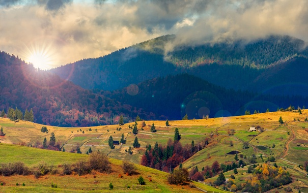 Фото обои природа, холмы, радуга, ели, rainbow, nature, hills