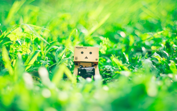 Фото обои Данбо, трава, amazon, Danbo