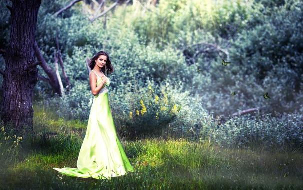 Фото обои лес, платье, Naira