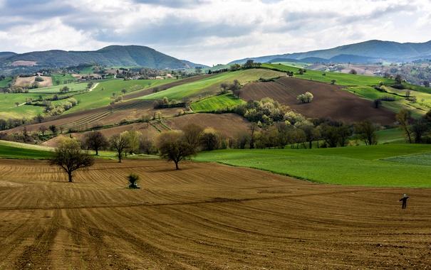 Фото обои деревья, горы, холмы, поля, Италия, пугало, Кампанья