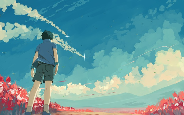 Фото обои облака, цветы, птицы, шорты, спина, мальчик, рубашка
