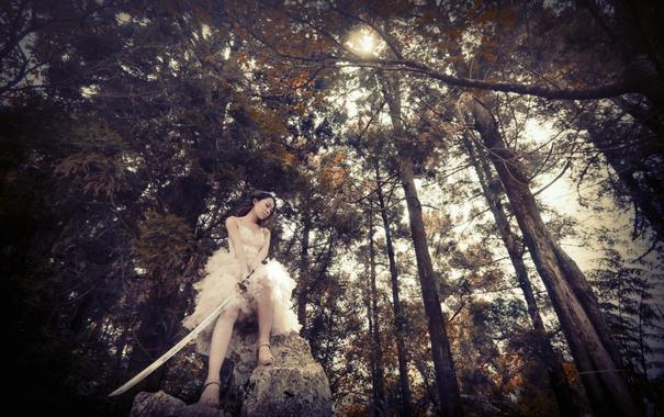 Фото обои лес, девушка, деревья, меч