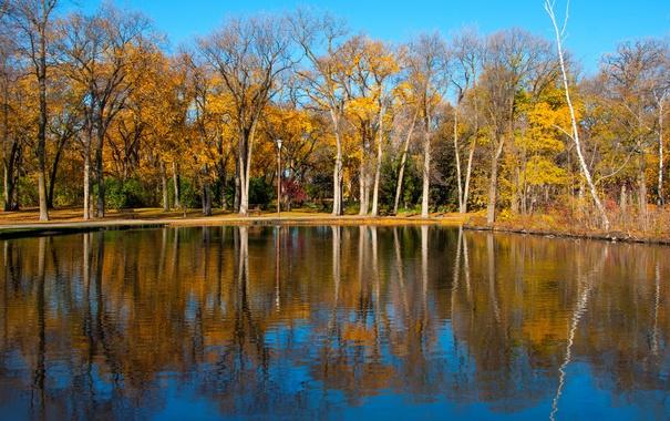Фото обои осень, деревья, озеро, пруд, парк, отражение