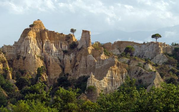 Фото обои деревья, природа, скалы, town of Ille-sur-Têt