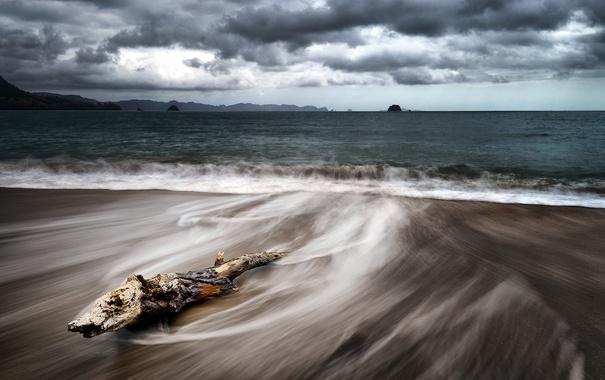 Фото обои море, берег, бревно