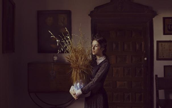 Фото обои девушка, лицо, комната, платье