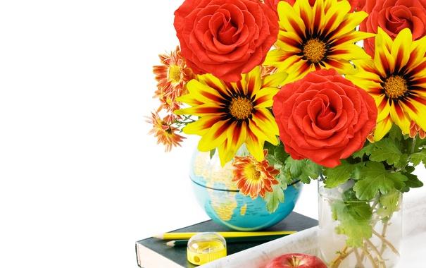 Фото обои цветы, розы, petals