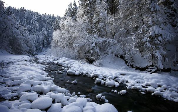 Фото обои снег, река, природа