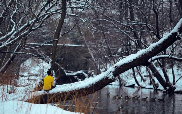 Фото обои river, trees, bridge, winter, snow, man, back