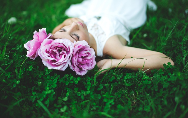 Фото обои трава, девушка, цветы, брюнетка, лежит