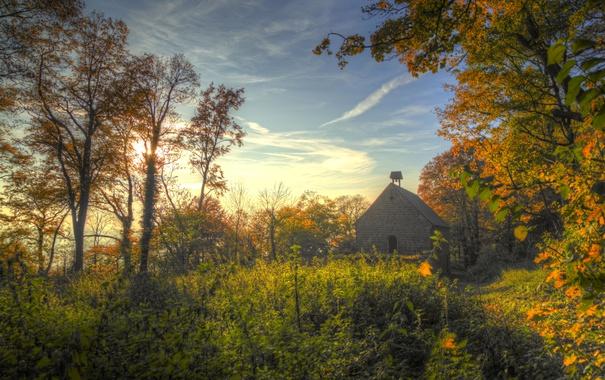 Фото обои осень, лес, небо, облака, деревья, церковь, солнечный свет