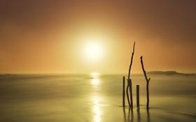 Обои море, туман, утро