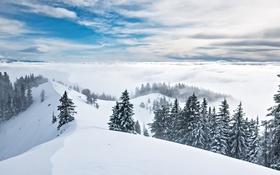 Картинка зима, небо, снег