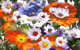 Картинка линии, цветы, лепестки, сад, луг, штрих