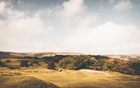 Обои сельская местность, поле, небо, горизонт, люди, облака