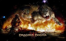Обои огонь, пламя, игра, лев, воин, змей, Dragons Dogma1