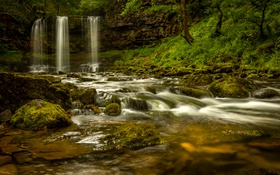 Картинка лес, деревья, скала, ручей, камни, течение, водопад