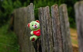Обои игрушка, забор, мишка