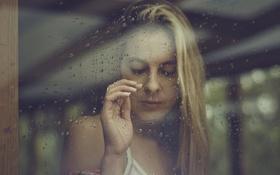 Картинка стекло, девушка, капли, окно