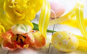 Обои Пасха, тюльпаны, яйца, цветы
