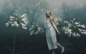 Обои девушка, цветы, природа